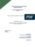 programa programacion y eval didacticas act julio-2012.pdf