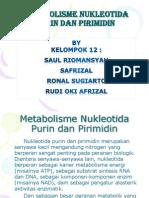 Tugas BIO KIMIA (Metabolisme Purin Pirimidin)