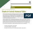 Deaths in Custody