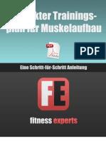 Der Perfekte Trainingsplan Fuer Muskelaufbau