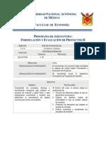 0709 Formulacion y Evaluacion de Proyectos II