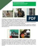 1º informe Dllo Rural (Junio)
