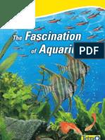 The Fascination of Aquariums
