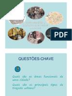 A_organizacao_e_dinamica_das_areas_urbanas_FILEminimizer_.pdf