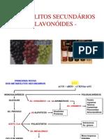 aula_3_flavonoides.pdf