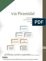 viapiramidalysindromefrontal9dcomp-101124212042-phpapp02