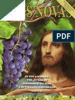 Boas Novas 25 - Permanecendo Em Cristo