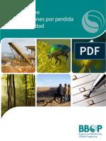 Estandar+Sobre+Compensaciones+Por+Perdida+de+Biodiversidad