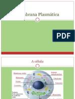 membranaplasmtica-090706095844-phpapp01