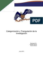 Categorización y Triangulación de la Investigación