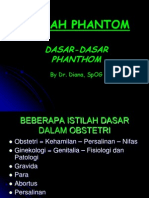 Dasar2 Phantom by Dr Diana