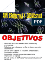 AD, Cromatina,Cromosoma Dorgma Central 81 Teoria FOP