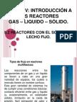Exposicion Reactores Heterogeneos