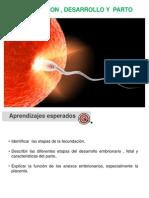 Clase  Fecundación, desarrollo embrionario y fetal