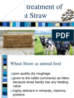 Urea Treatment of Wheat Straw