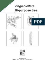 Moringa - A Multipurpose Tree