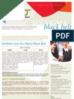 Certified Lean Six Sigma Black Belt Brochure