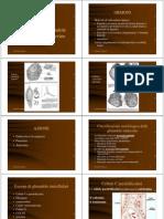ghiandolendocrine.pdf