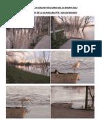 Crecida del río Ebro 20130122, imágenes - IES Luis Buñuel