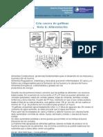 Cria Gallinas Caseras CAP 6
