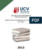 Directivas Cursos de Tesis (5 -2013) (2)