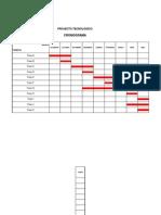 Cronograma Pat 2013