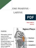 Anatomi Pharynx - Larynx