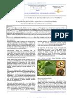 Jatropha Curcas Paper