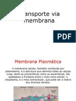 _Seminário+Fisio.+Veg.+2-TRANSP.+DE+MEMBRANA.ppt_