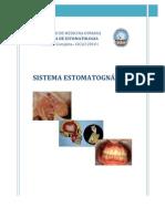 Copia de Sistema-estomatognatico
