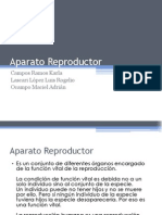 Aparato Reproductor Expo!