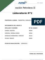 2013 c1 Ppii Piagentini l1 Densificacion
