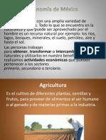 La Economia de Mexico...Tics