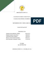 Avance de Proyecto de Catedra ICA