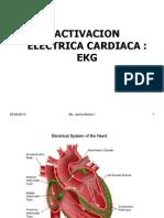 Activ Electrica EKG