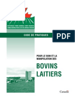 Bovins Laitiers Codes de Pratiques