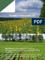 Regiuni Si Peisaje Agricole