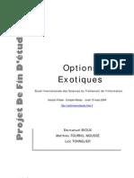 Rapport - Option Exotiques