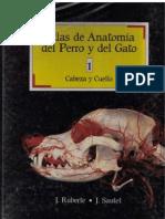 Atlas de Anatomía del Perro y del Gato - Vol. I - Cabeza y Cuello (J. Ruberte, J. Sautet)