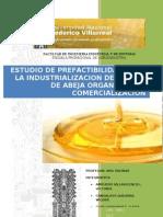 Estudio de Inversion Del La Miel de Abeja Organica[1]