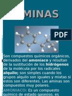 aminas_quimica