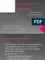 Fisiologia. Power s.nervioso