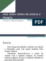 Aula sobre vinhos da Áustria e Hungria