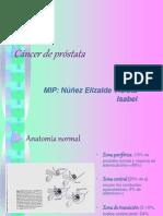 35396830 Cancer de Prostata