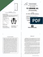 Guia de Estudio Derecho Laboral