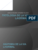 patologiadelavialagrimal-121003055531-phpapp01.pptx