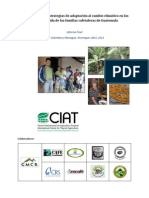 Vulnerabilidad y susceptibilidad de las familias cafetaleras guatemaltecas a cambio climático