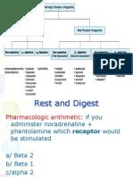 Adrenergic Receptor Anatgonists