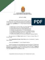 Acta Junta Municipal de Distrito Norte junio 2013