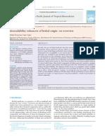 Bioavailibility Enhancer of Herbal Origin